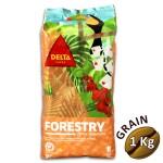 Café en grains DELTA CAFES FORESTRY 1 kg