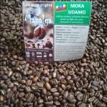 Café pure Origine MOKA SIDAMO - Ethiopie MAPALGA
